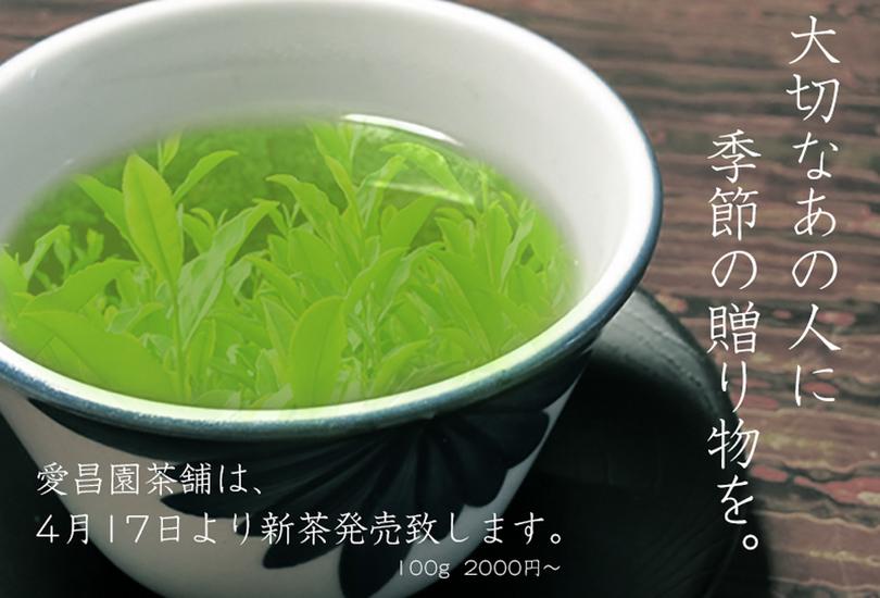 本日17日より新茶の販売をします。